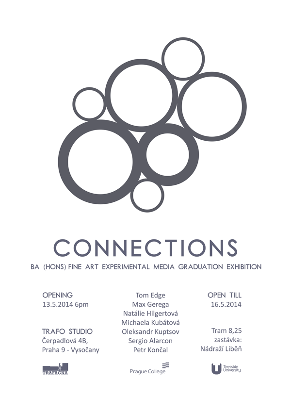 BA (Hons) Fine Art Experimental Media graduation exhibition 2014