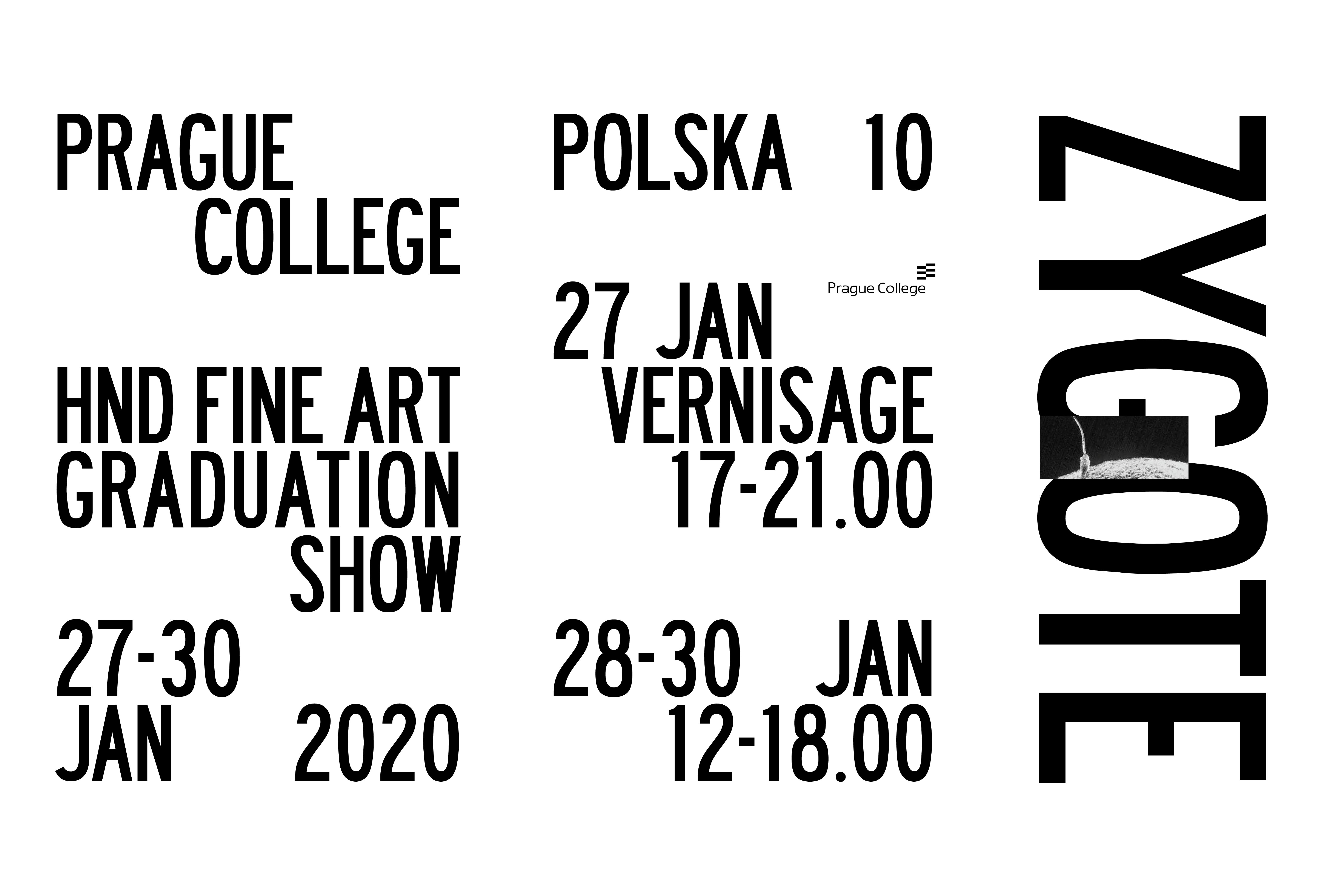 ZYGOTE - HND Fine Art Exhibition 2020
